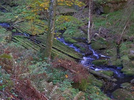 Pohořský potok - na dně byly v některých místech umístěny dubové trámy pro zlepšení splavnosti (snímky z roku 2018)