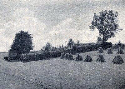 Maxovský hřbitov