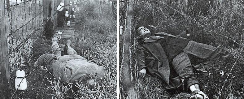 Mrtvá těla uprchlíků z komunistického ráje při zátarasech pod elektrickým napětím