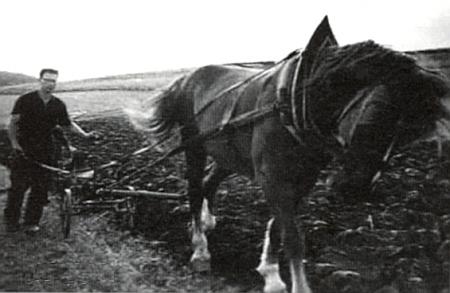 Jeho otec Josef Wierer za pluhem