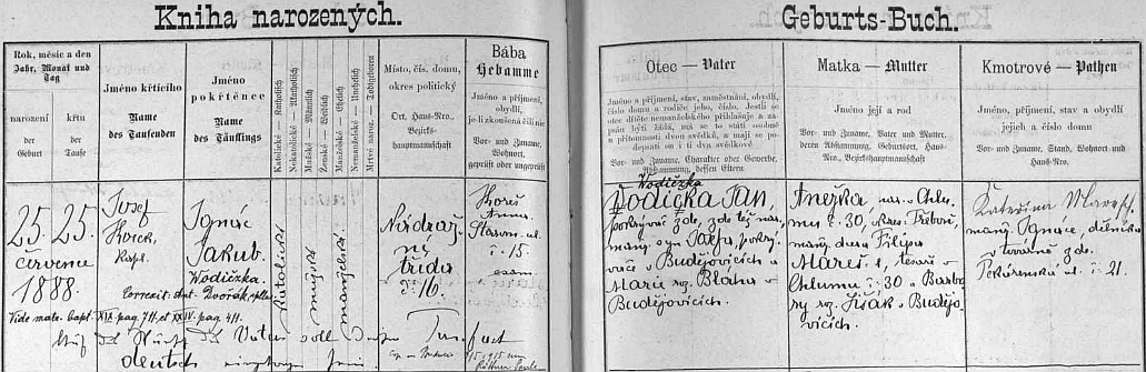 Podle záznamu v českobudějovické matrice se narodil v Nádražní třídě čp. 16 otci Janu Vodičkovi, který však projevil přání psát své i synovo příjmení Wodičzka, nechybí ani přípis o Ignazově už svatbě 9. května 1915 s Paulou, roz. Böttnerovou