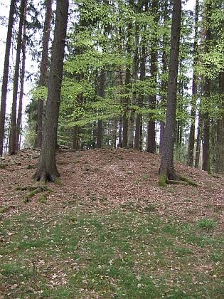 Mohyly v lese Kopřivna