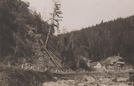 Pohlednice firmy Wolf zachycuje Turnerovu chatu s viditelnými následky vichřice v okolí