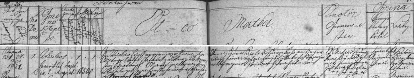 Záznam o jeho narození ve Velechvíně a křtu v matrice farní obce Ševětín