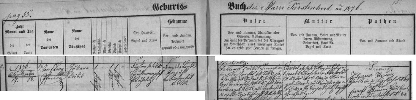 Záznam křestní matriky farní obce Knížecí Pláně o narození jeho babičky z matčiny strany, jejíž otec a děd jsou tu psáni ještě příjmením Přibil