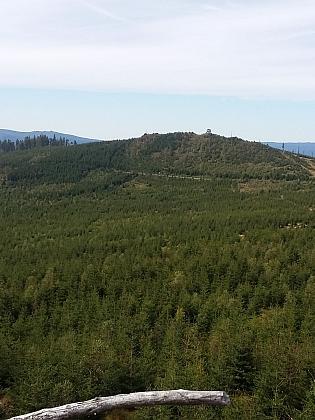 Snímek z roku 2020 zachycuje postupnou obnovu lesa
