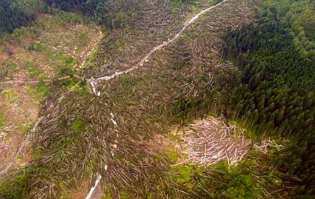 Okolí Schachtenhausu po větrné bouři z 13. července 2011