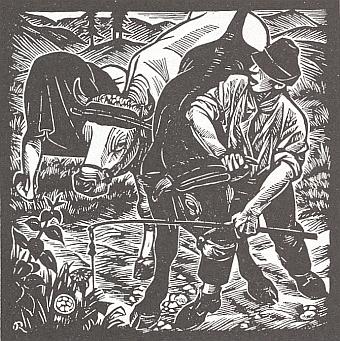 Obálka (1995), titulní list a jedna z Rotherových ilustrací nového vydání jeho knihy vnakladatelství Morsak, Grafenau